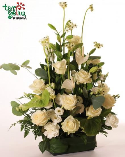 Funeral arrangement TO LIVE