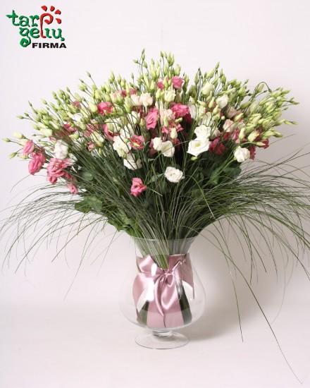Eustoma bouquet MORNING