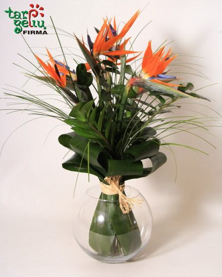 Bouquet BIRD OF PARADISE