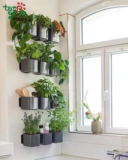 CUBE Glossy augalų sienos rinkinys