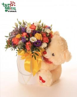 Flower box & Teddy Bear