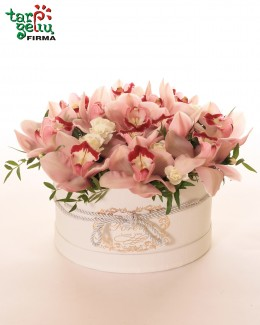 Box with Orchids