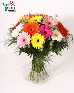 Colorful Bouquet of Gerbera