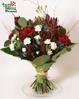 """Carnation Dance"""