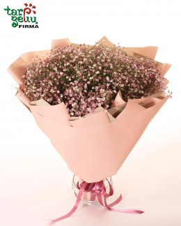 Bouquet of gypsophila