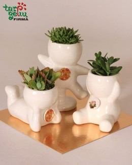 """Plant in a pot """"Smile"""""""